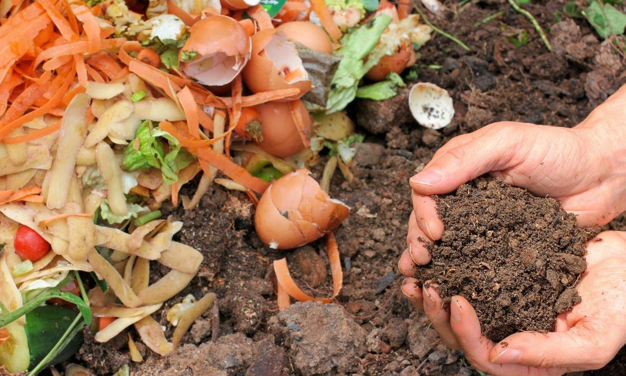 compostaje transforma residuos de tu hogar